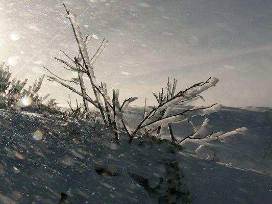 tempete glaciale