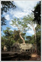 Temple D'AnKhOr