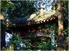 Temple taoïste de Beijing. 2