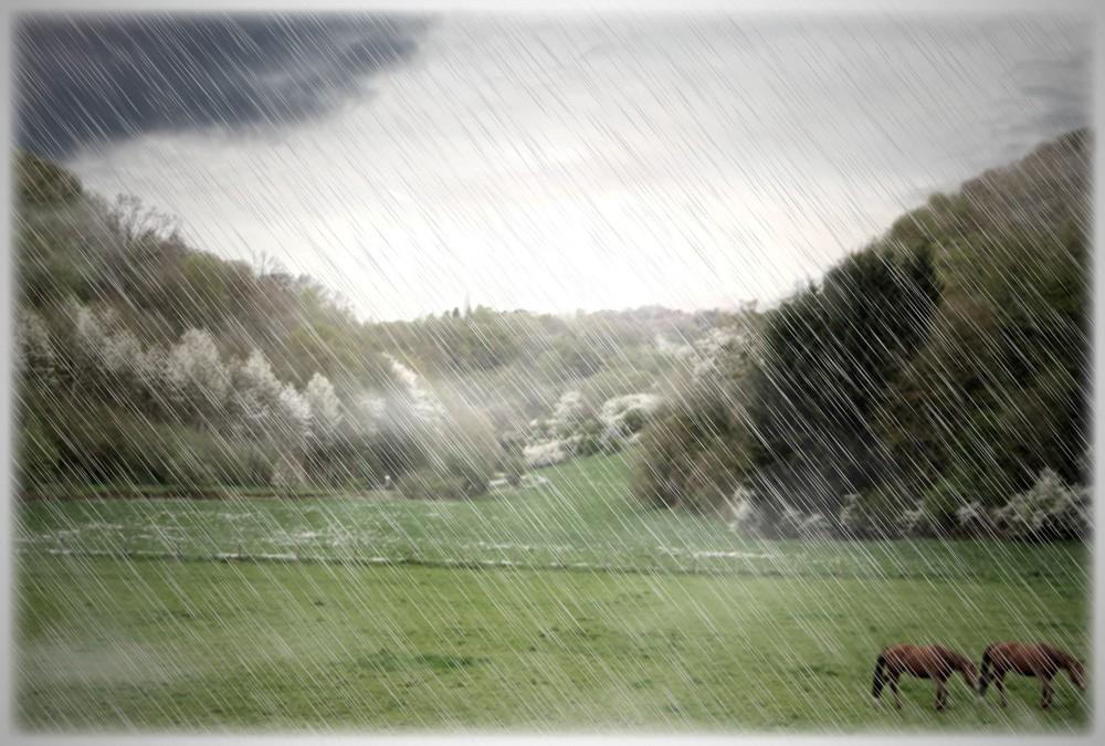 temps de cheval