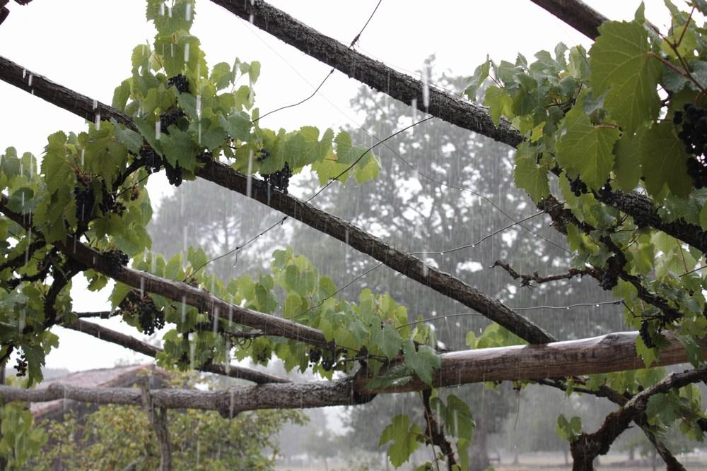 temps de pluie