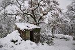 Tempête de neige dans le sud