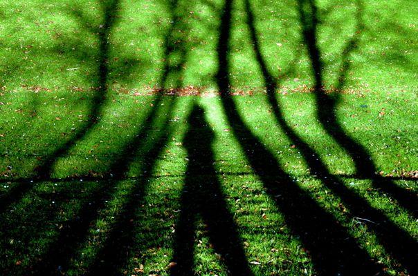Tener 18 años: Entre las sombras