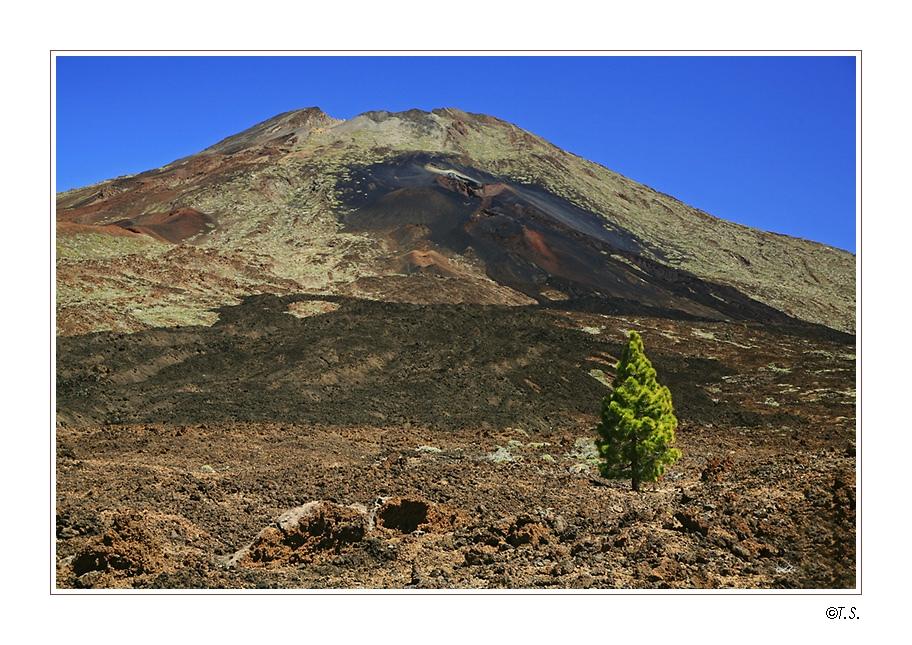 Teneriffa (2) - Teide National Park