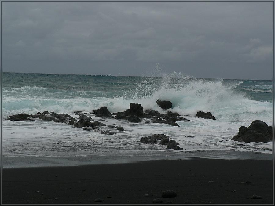 Teneriffa Dezember 2008 - Meer Teil II