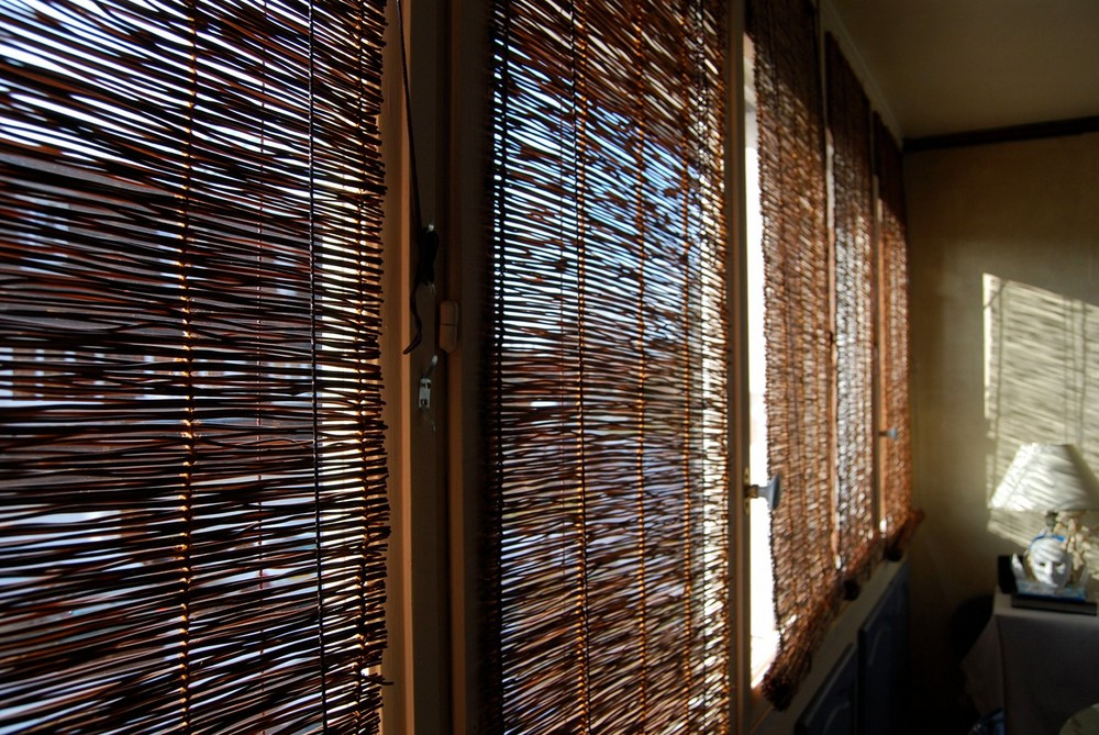 tentative d'intrusion du soleil dans ma cuisine aujourd'hui...