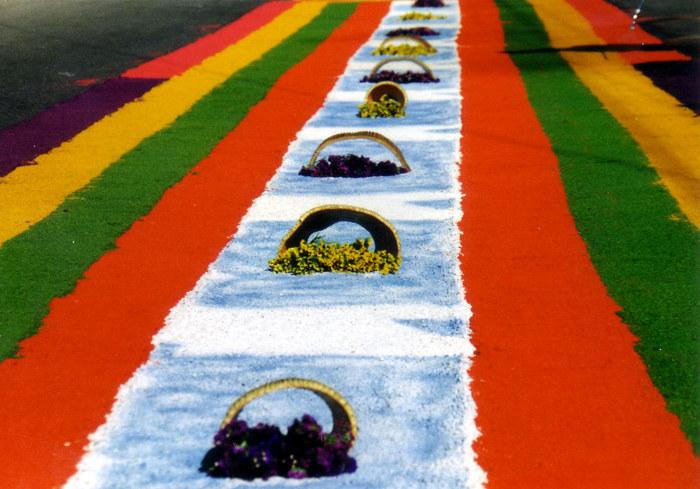 Teppich aus Sägemehl