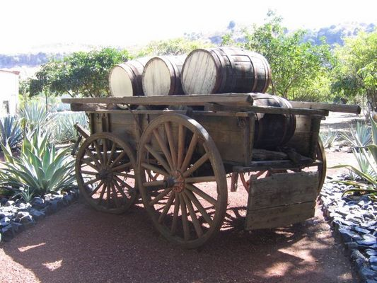 Tequila´s transport
