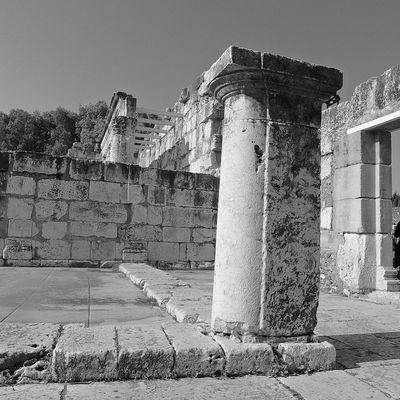 Terrasanta - Sinagoga di Cafarnao - 1