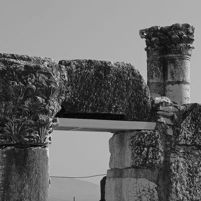 Terrasanta - Sinagoga di Cafarnao - 6