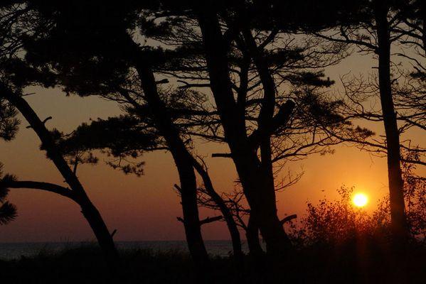 Terrassenausblick am Morgen
