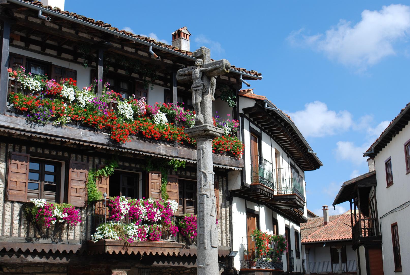 terrazas floreadas