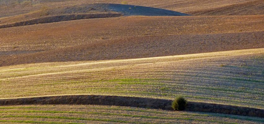 Terre castigliane 2