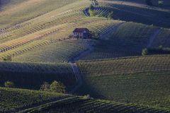 Terre da vino (2)