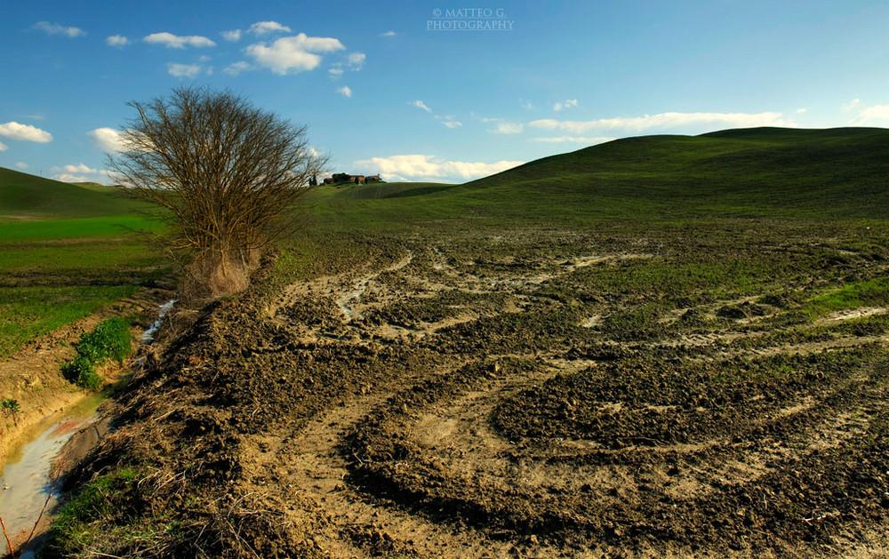 Terre di Siena 2