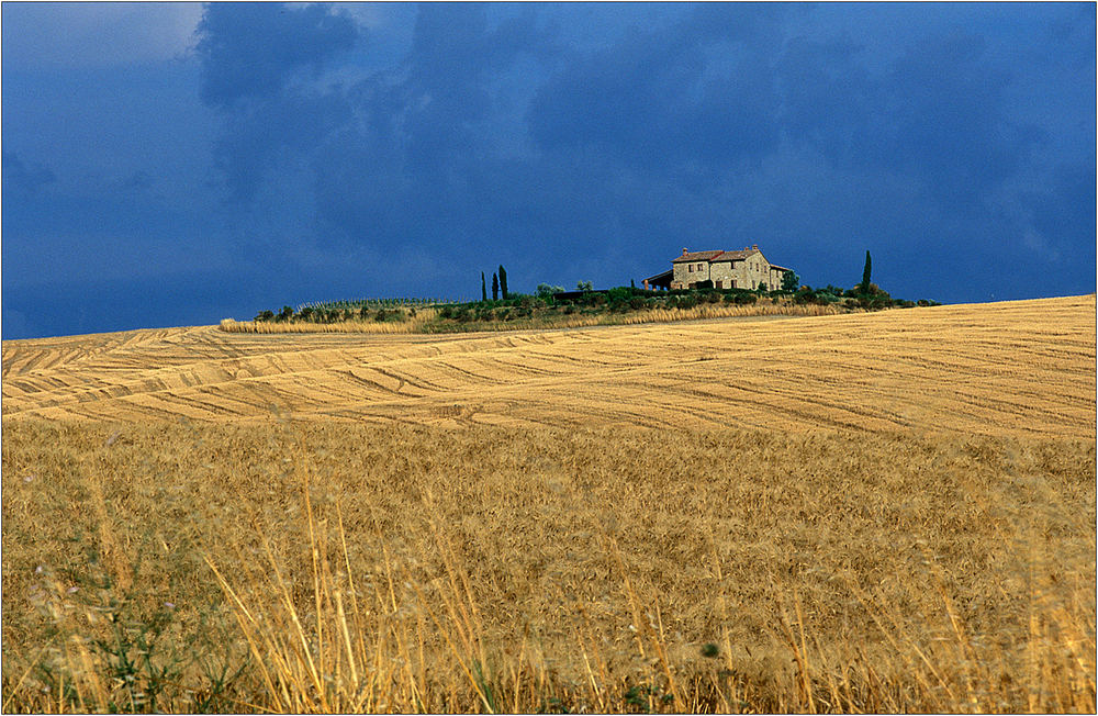 Terre di Siena II