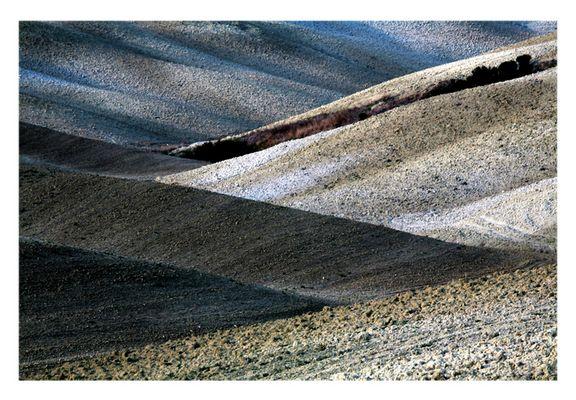 Terre Senesi