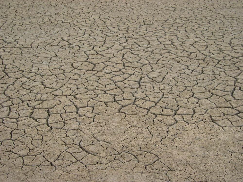 Terre très séchée