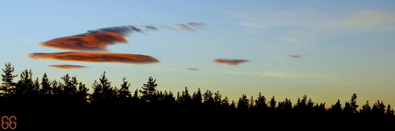 tete dans les nuages