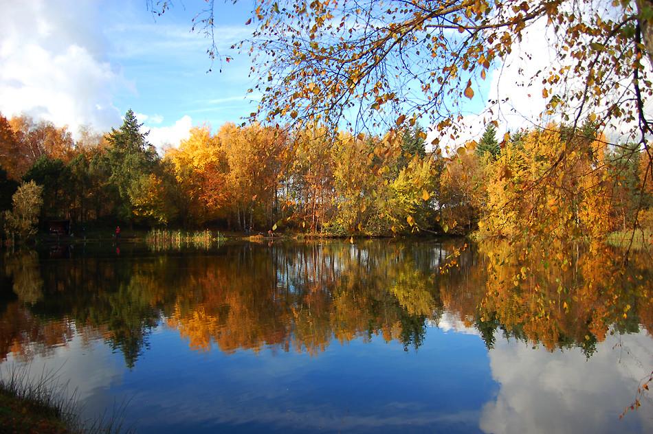 Teufelsee Bönningstedt / Herbstromantik