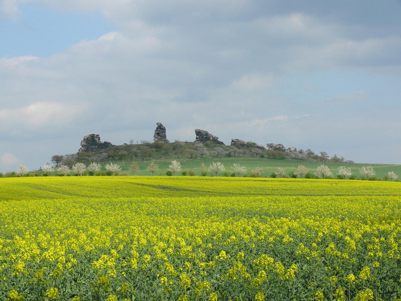 Teufelsmauer bei Weddersleben, aus Richtung Thale gesehen