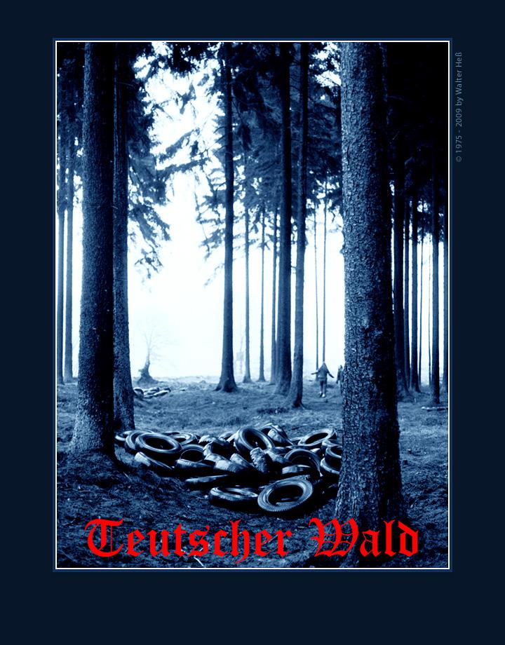 Teutscher Wald