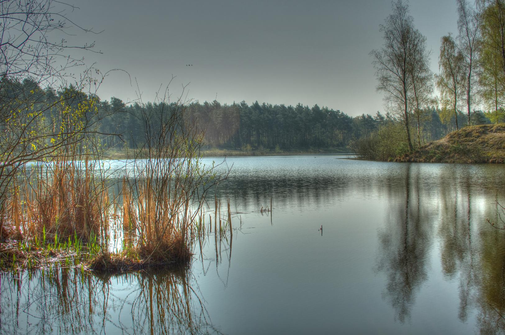 Teverener Heide im Morgengrau