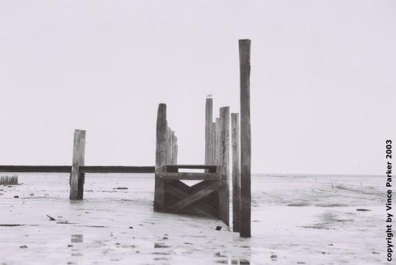 Texel ~ black&white ~