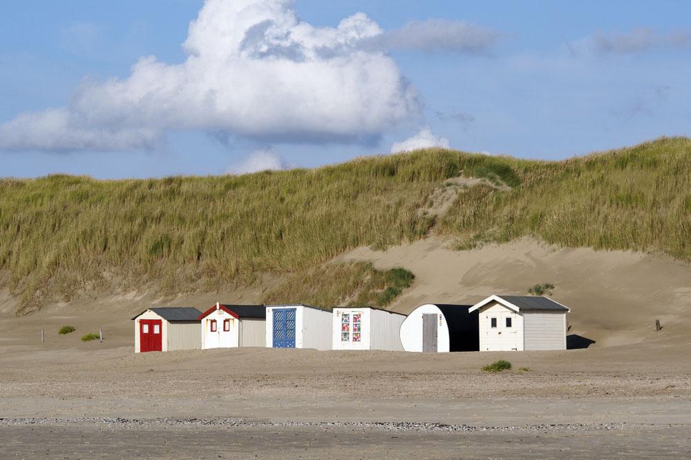 Texel IV