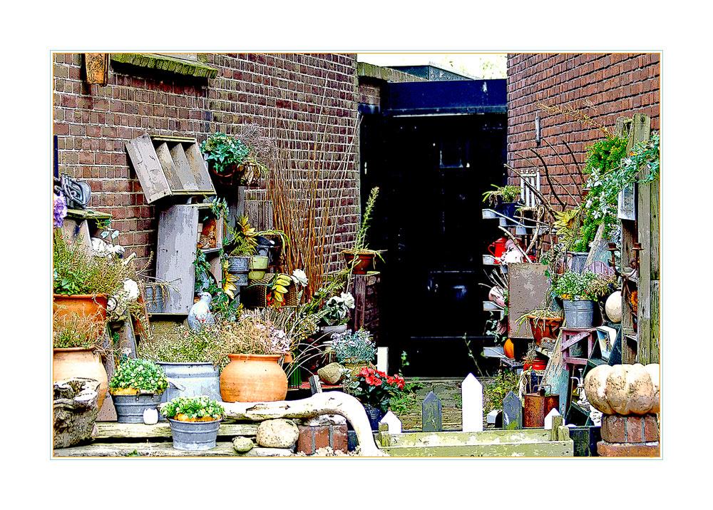 TEXEL IV - Impression von Den Hoorn