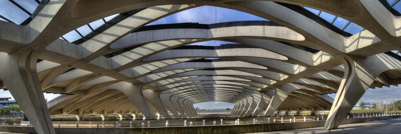 TGV-Bahhof, Lyon: (nicht nur) tragende Struktur