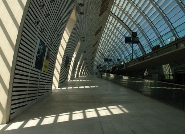 TGV Kathedrale von Avignon