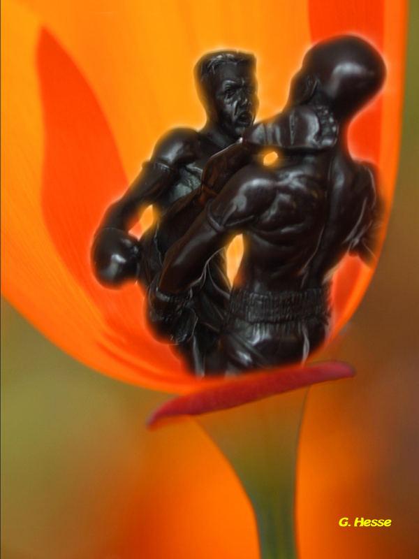 Thaibox-Kämpfer in Buddhablume-GH