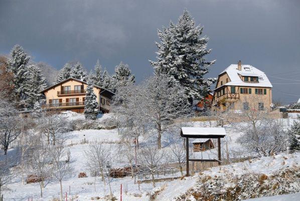 Thannenkirch