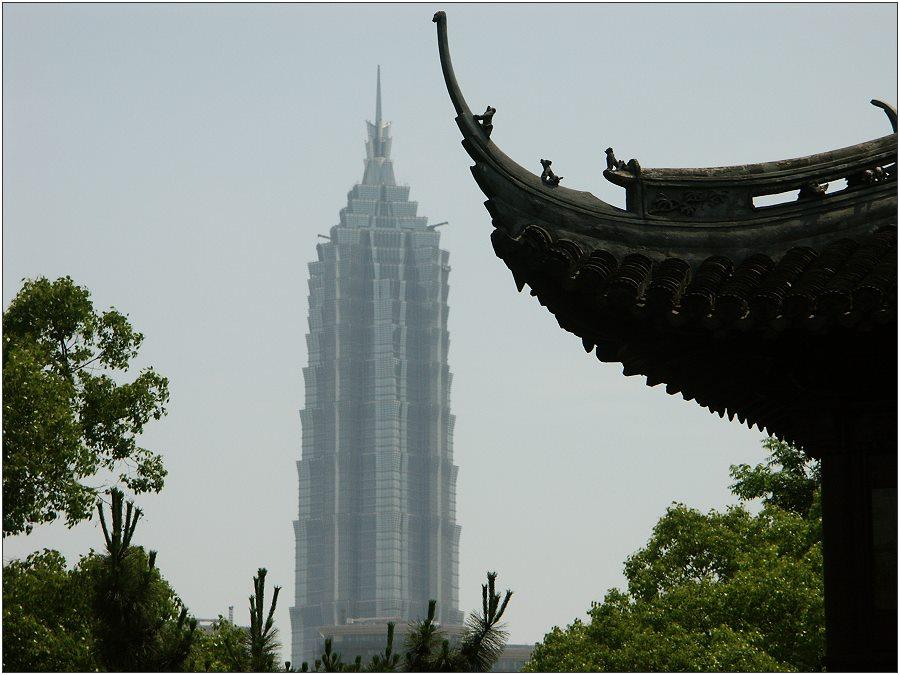 """That's Shanghai"""