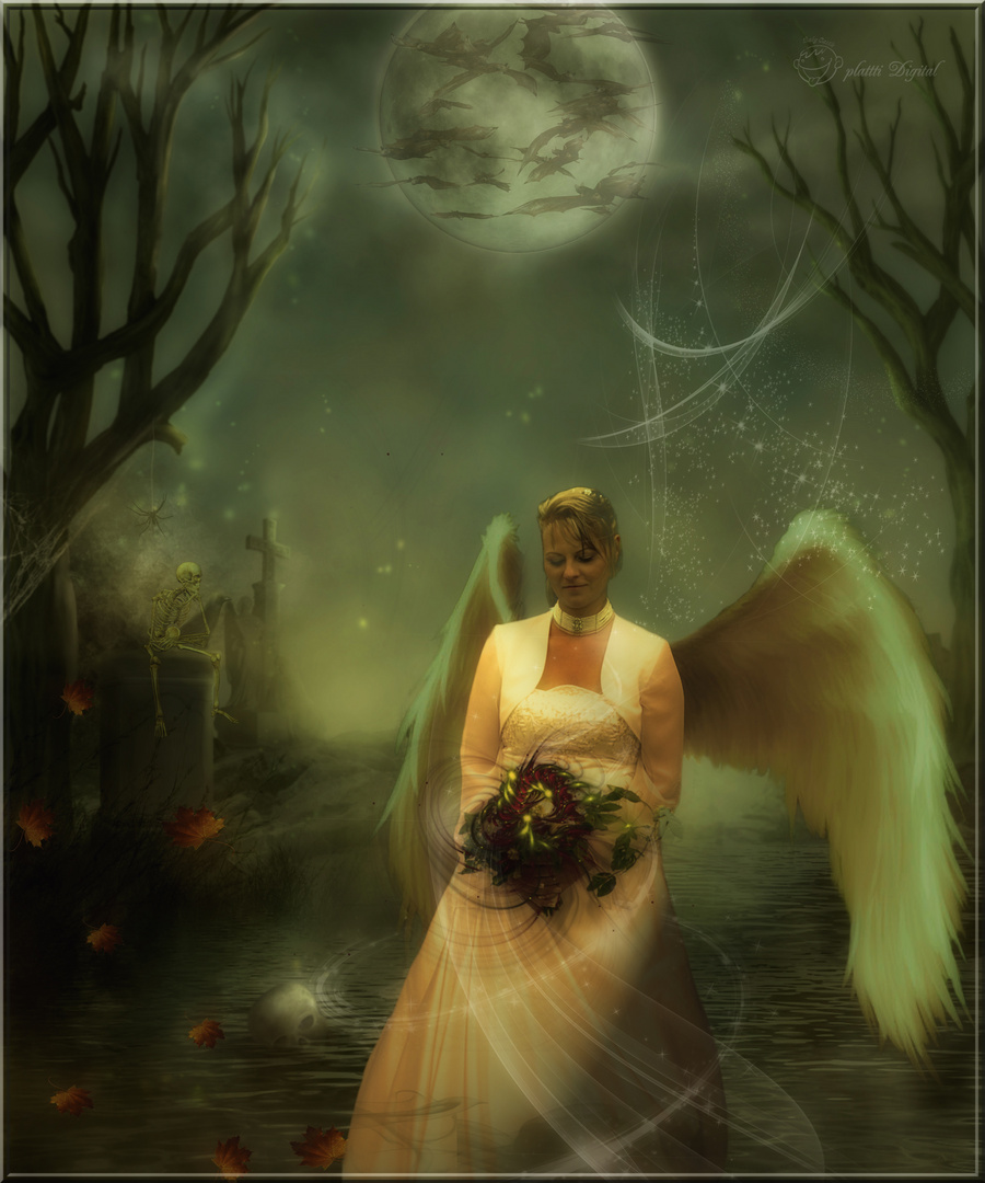 THE ANGEL OF DREAMS