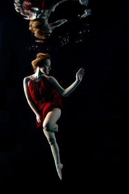 The Ballett Dancer