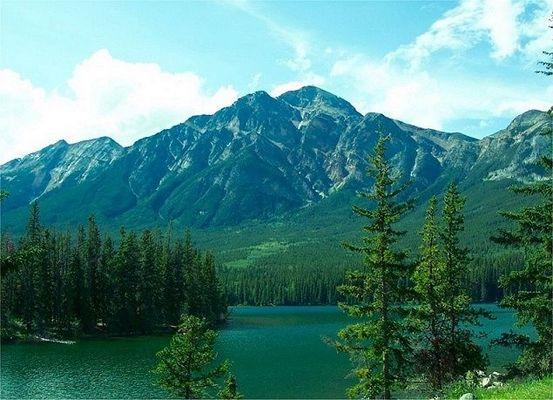 The Beloved Rockies