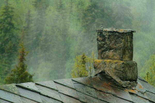 The bird on the chimney