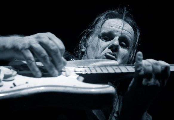 the blues - walter trout
