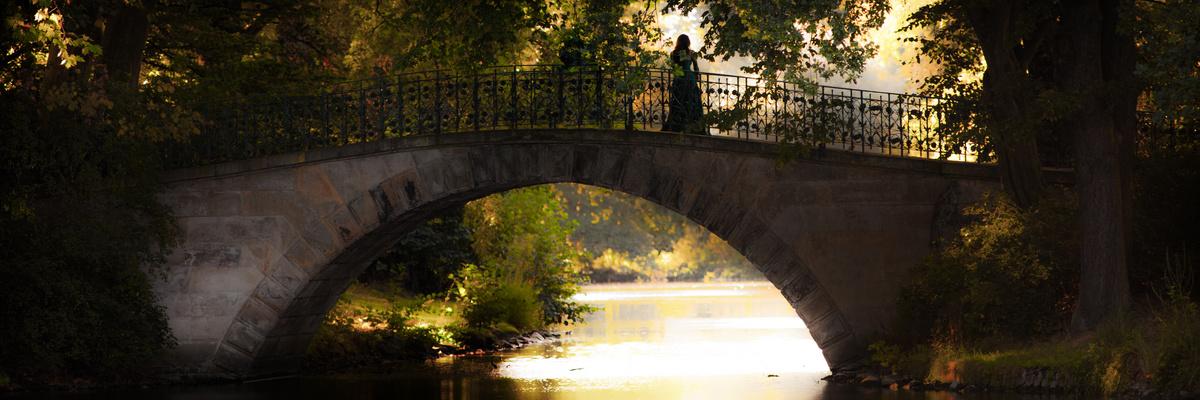 the bridge...-