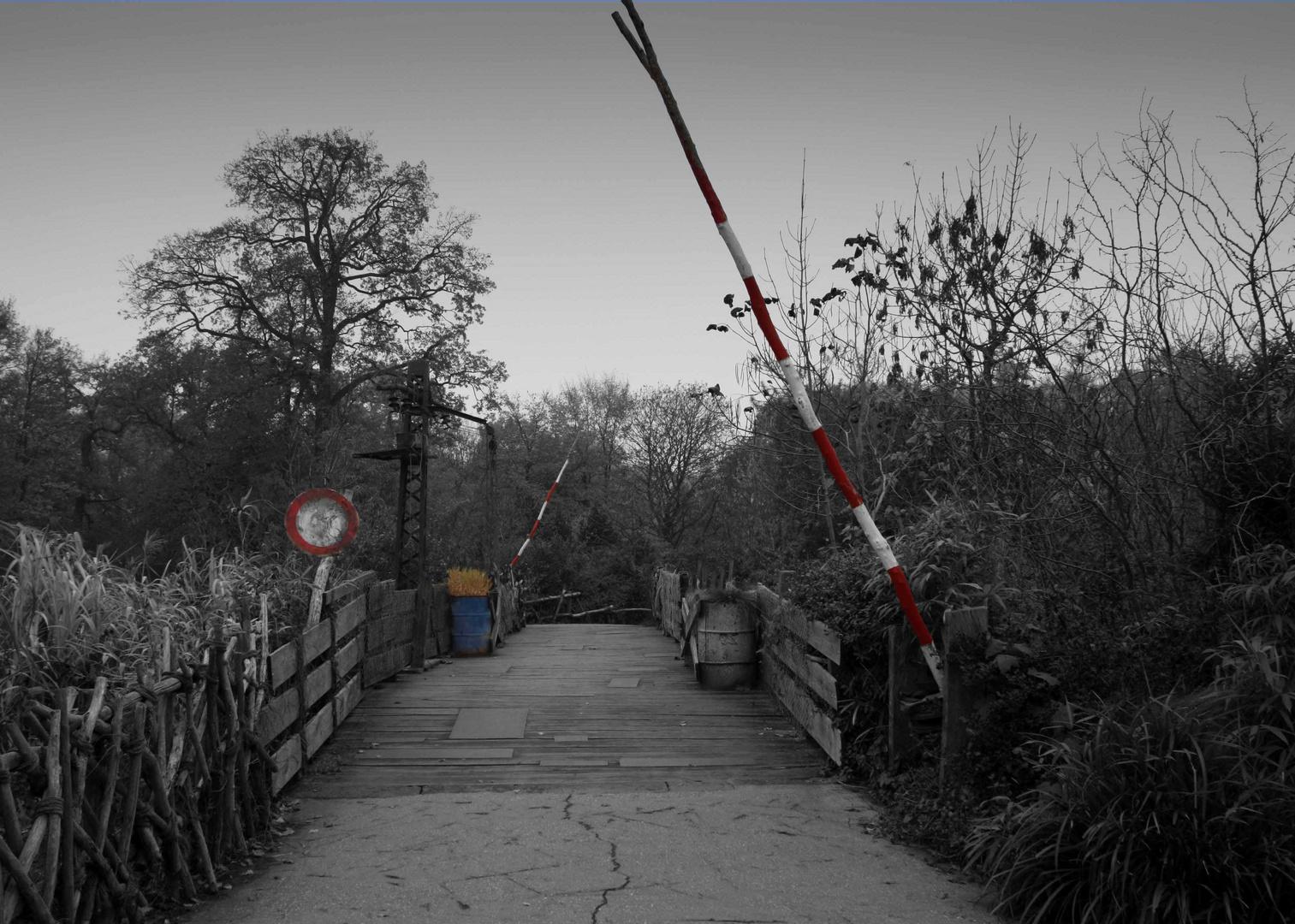 The Bridge -Zoo Hannover-