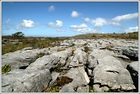 The Burren I......