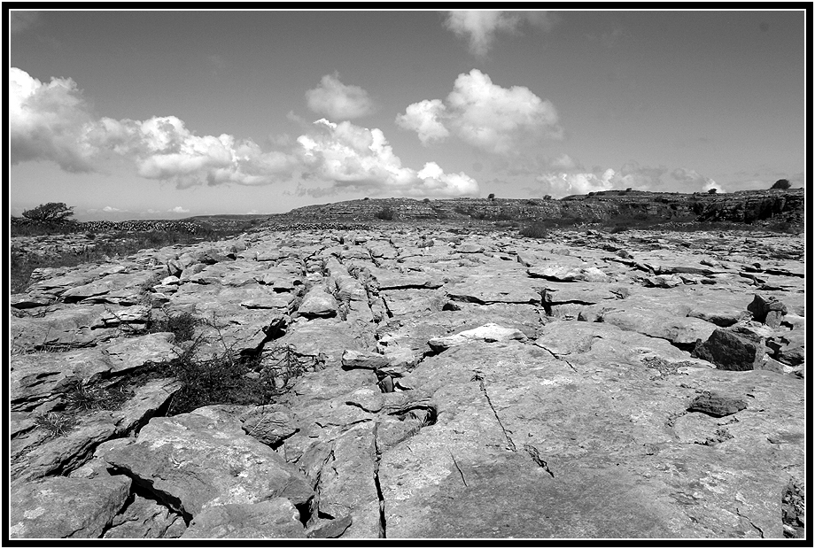 the Burren III....