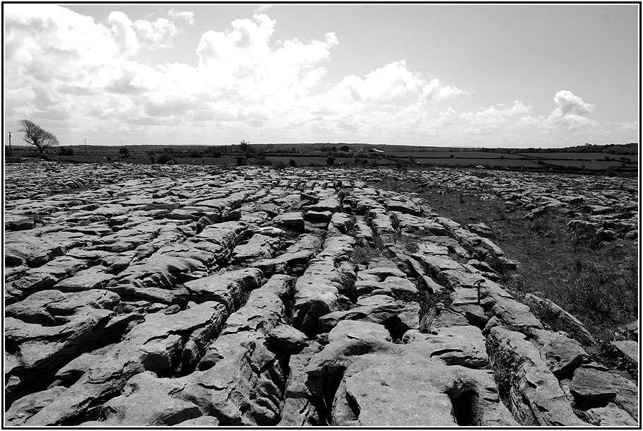 the Burren IV.....
