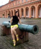 The cannon and the model