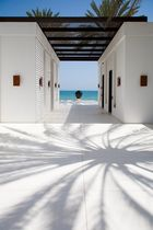 The CHEDI Muscat I