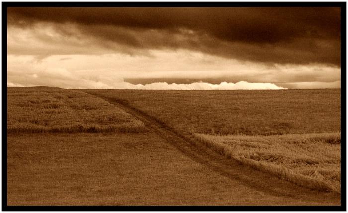 The crossing - Querfeldein