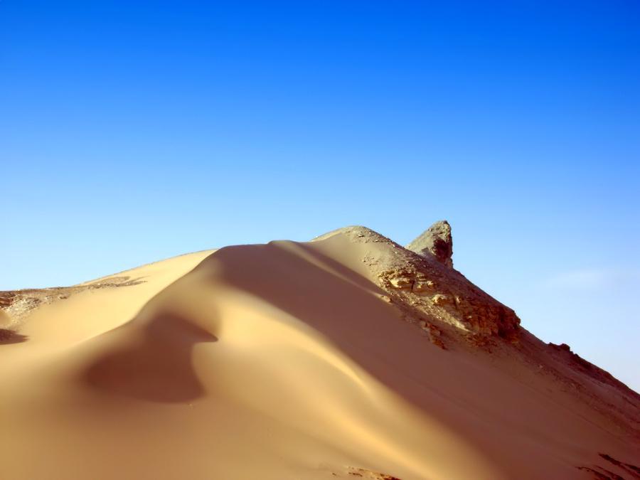The Dancing Desert