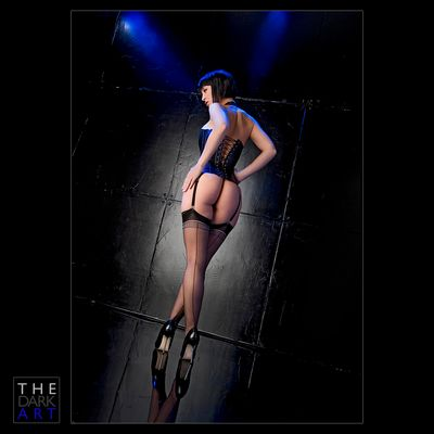 THE DARK ART - Blue Lights... / High Gloss Show...
